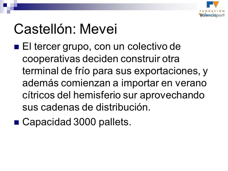 Castellón: Mevei El tercer grupo, con un colectivo de cooperativas deciden construir otra terminal de frío para sus exportaciones, y además comienzan