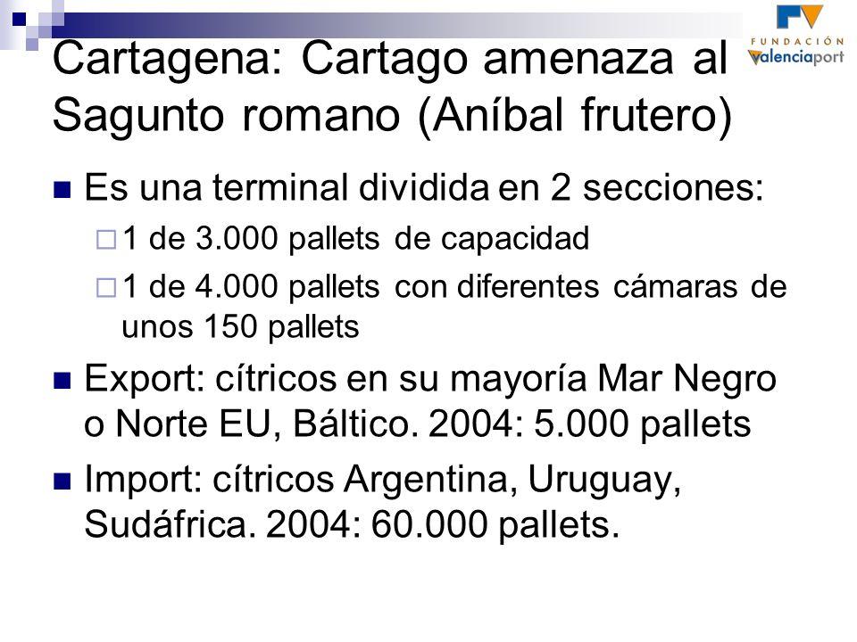 Cartagena: Cartago amenaza al Sagunto romano (Aníbal frutero) Es una terminal dividida en 2 secciones: 1 de 3.000 pallets de capacidad 1 de 4.000 pall
