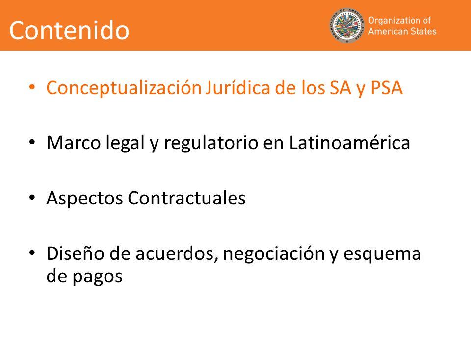 Conceptualización Múltiples definiciones de SA Para abordar aspectos jurídicos las amplias son preferibles SA: Componentes de la Naturaleza directamente disfrutados, o utilizados para el bienestar del ser humano.