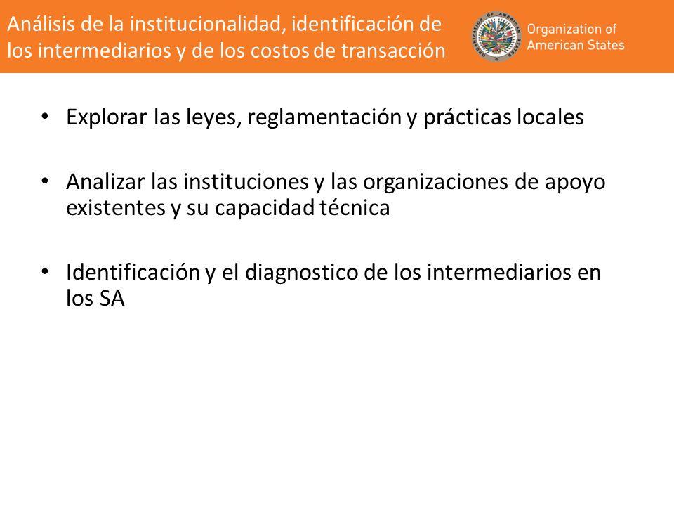Explorar las leyes, reglamentación y prácticas locales Analizar las instituciones y las organizaciones de apoyo existentes y su capacidad técnica Iden