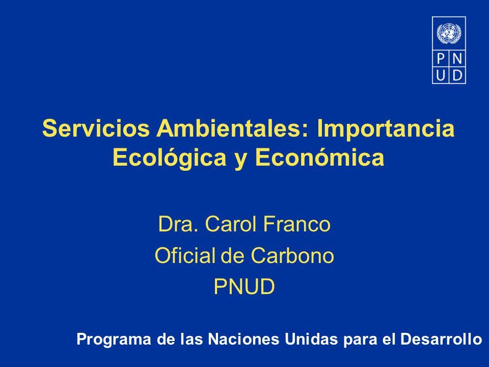 Programa de las Naciones Unidas para el Desarrollo Servicios Ambientales: Importancia Ecológica y Económica Dra. Carol Franco Oficial de Carbono PNUD