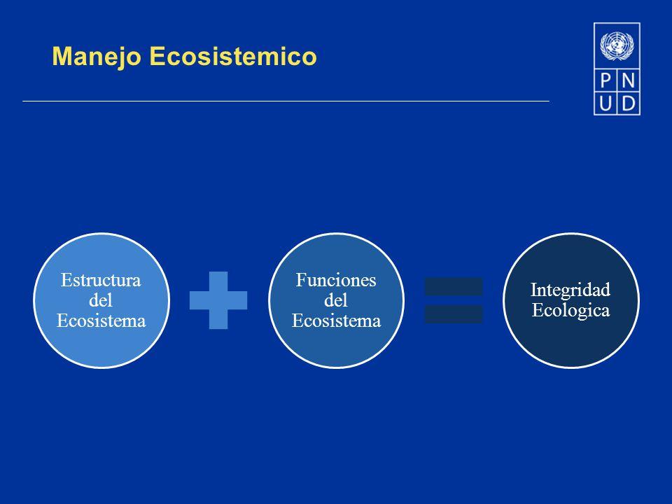 Manejo Ecosistemico Estructura del Ecosistema Funciones del Ecosistema Integridad Ecologica