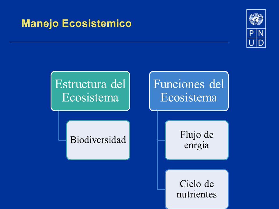 Manejo Ecosistemico Estructura del Ecosistema Biodiversidad Funciones del Ecosistema Flujo de enrgia Ciclo de nutrientes