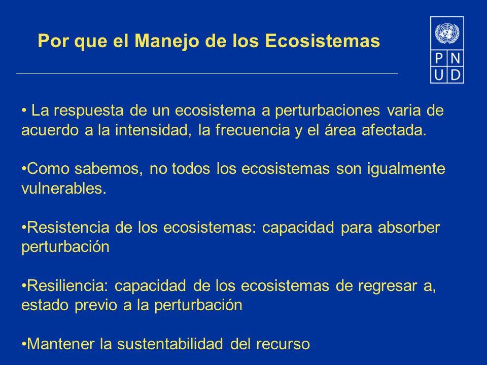 La respuesta de un ecosistema a perturbaciones varia de acuerdo a la intensidad, la frecuencia y el área afectada. Como sabemos, no todos los ecosiste