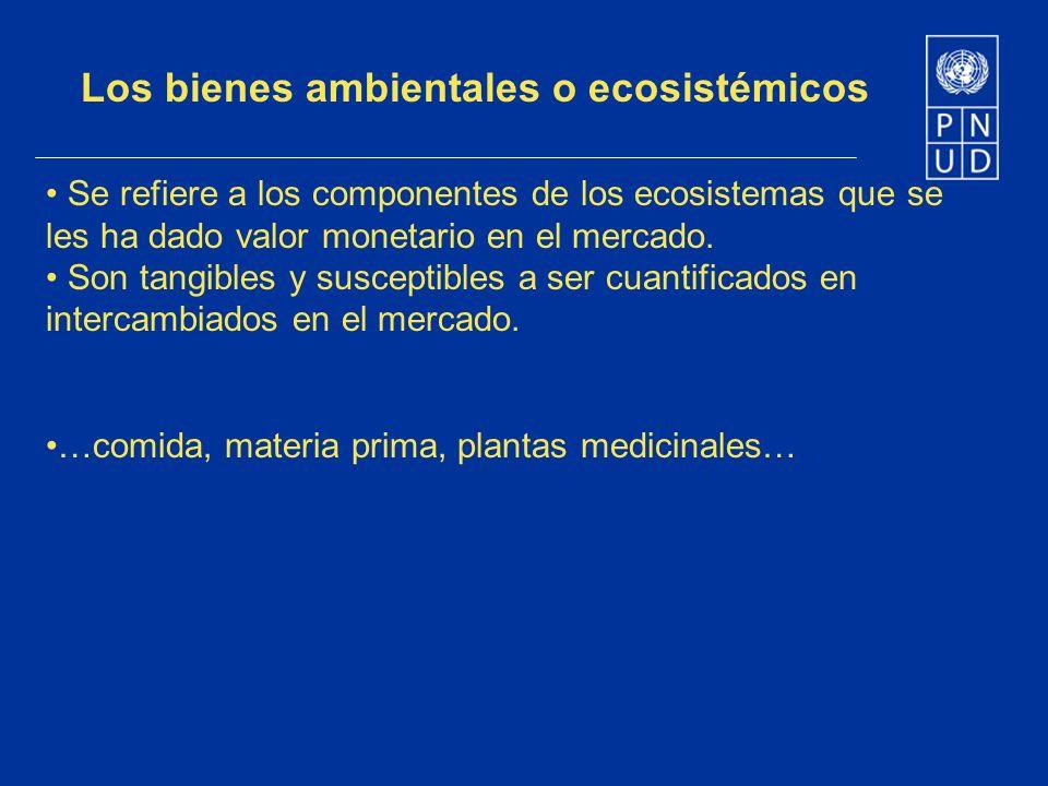 Los bienes ambientales o ecosistémicos Se refiere a los componentes de los ecosistemas que se les ha dado valor monetario en el mercado. Son tangibles