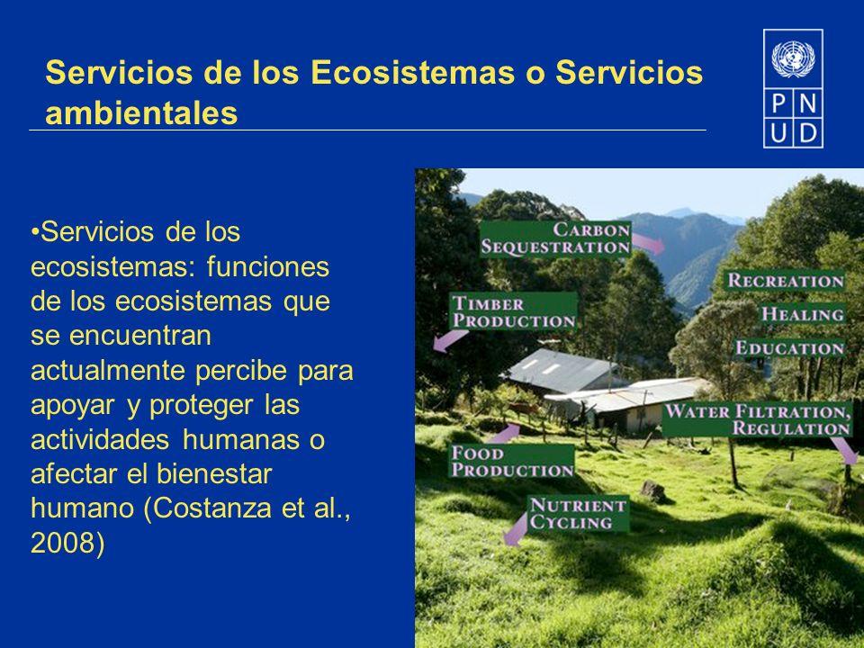 Servicios de los Ecosistemas o Servicios ambientales Servicios de los ecosistemas: funciones de los ecosistemas que se encuentran actualmente percibe