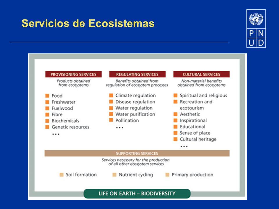 Servicios de Ecosistemas