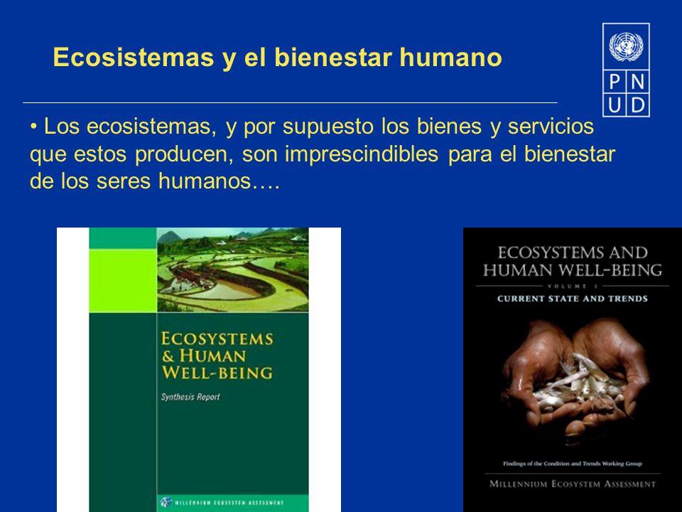 Ecosistemas y el bienestar humano Los ecosistemas, y por supuesto los bienes y servicios que estos producen, son imprescindibles para el bienestar de