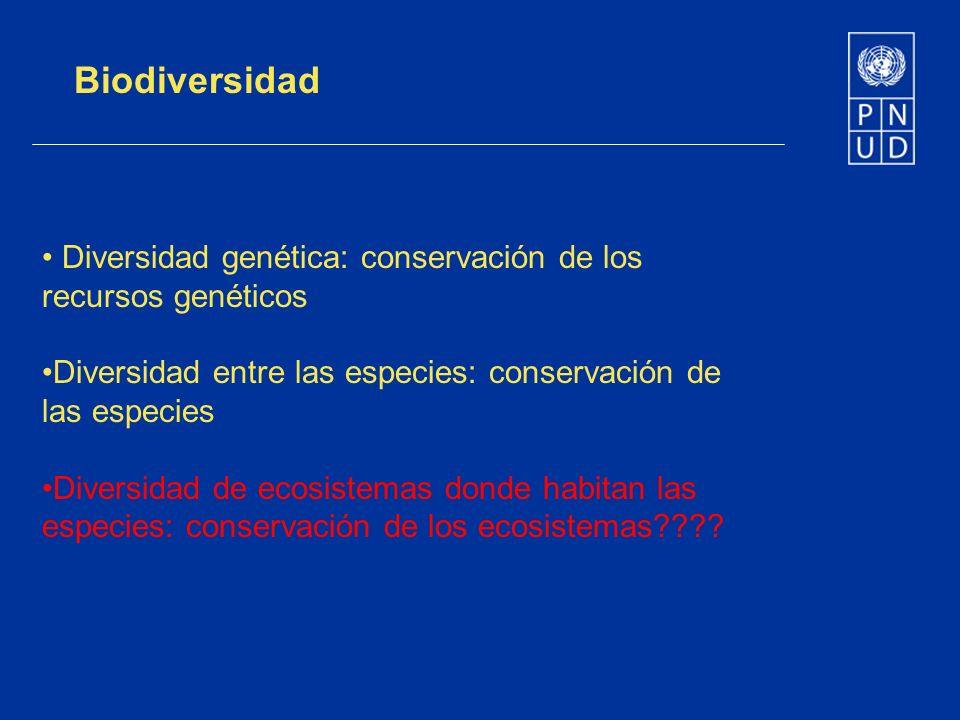 Biodiversidad Diversidad genética: conservación de los recursos genéticos Diversidad entre las especies: conservación de las especies Diversidad de ec