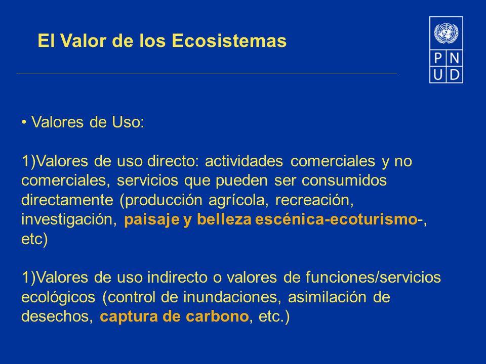 El Valor de los Ecosistemas Valores de Uso: 1)Valores de uso directo: actividades comerciales y no comerciales, servicios que pueden ser consumidos di