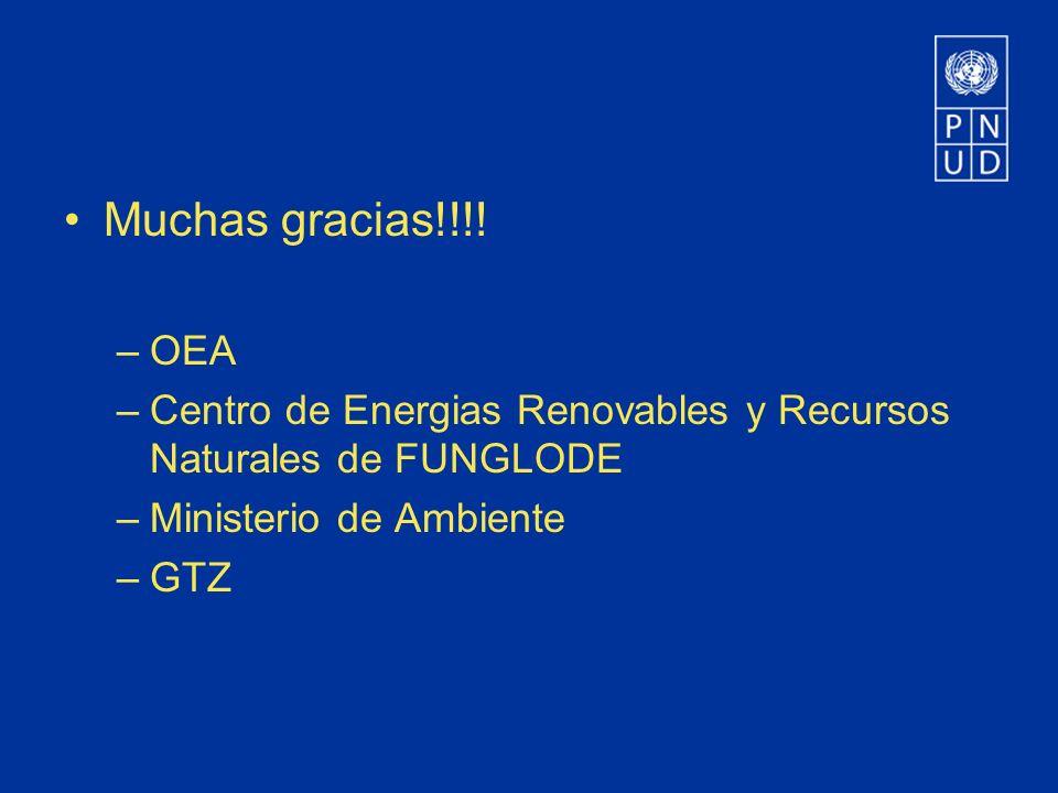 Muchas gracias!!!! –OEA –Centro de Energias Renovables y Recursos Naturales de FUNGLODE –Ministerio de Ambiente –GTZ