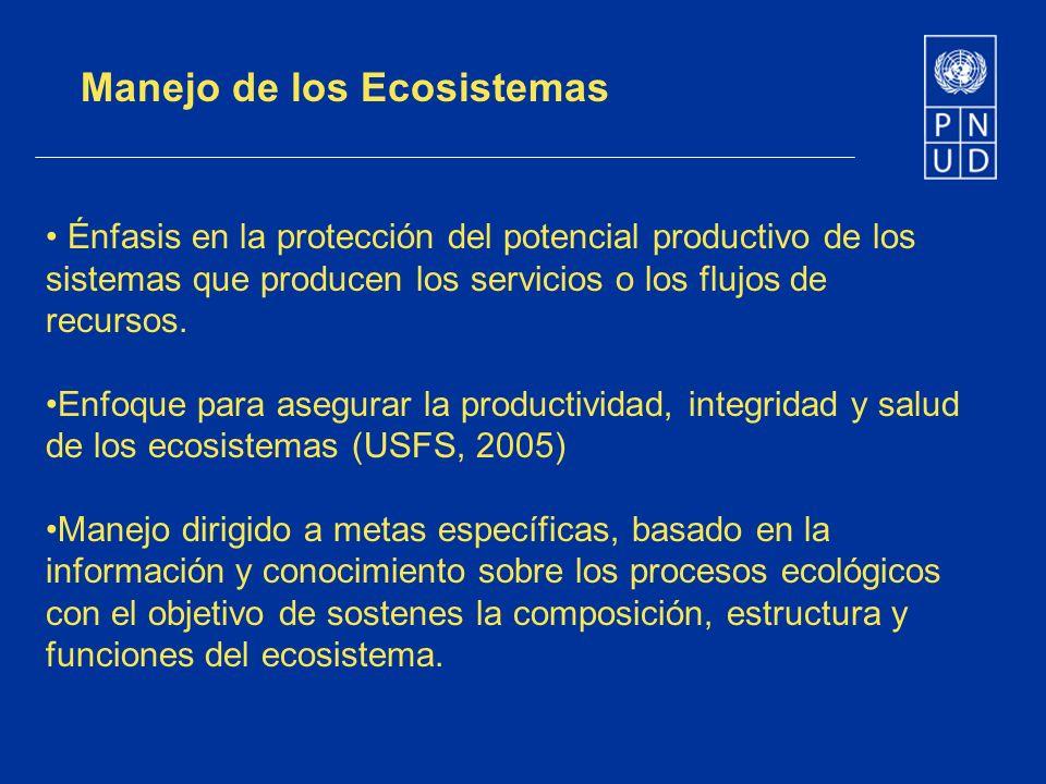 Énfasis en la protección del potencial productivo de los sistemas que producen los servicios o los flujos de recursos. Enfoque para asegurar la produc