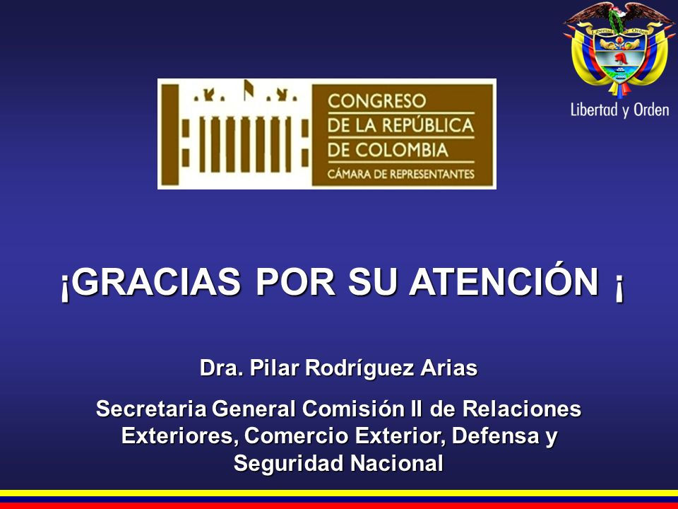 ¡GRACIAS POR SU ATENCIÓN ¡ Dra. Pilar Rodríguez Arias Secretaria General Comisión II de Relaciones Exteriores, Comercio Exterior, Defensa y Seguridad