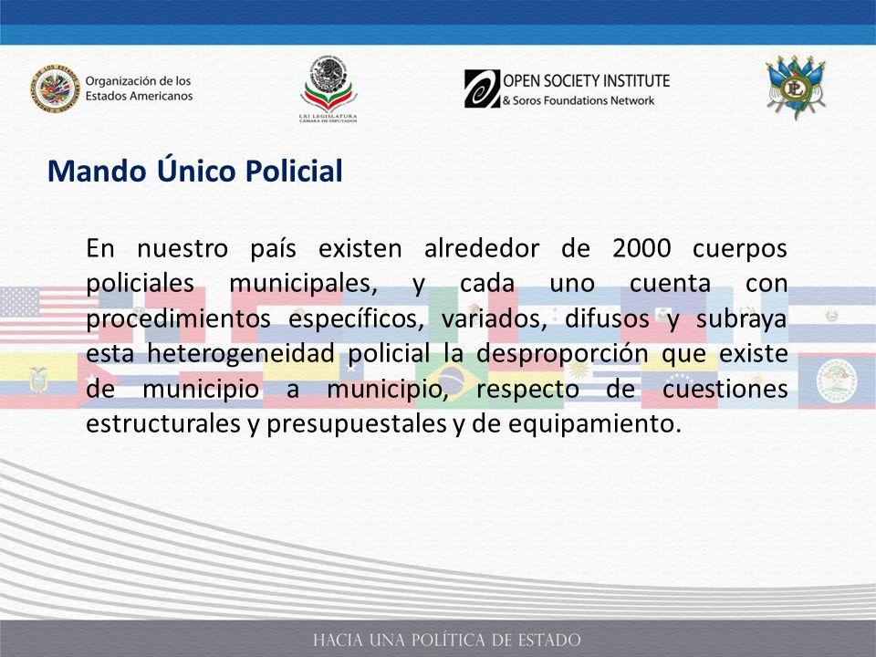 En nuestro país existen alrededor de 2000 cuerpos policiales municipales, y cada uno cuenta con procedimientos específicos, variados, difusos y subray
