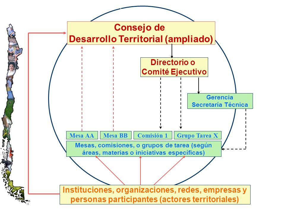 Instituciones, organizaciones, redes, empresas y personas participantes (actores territoriales) Gerencia Secretaría Técnica Directorio o Comité Ejecutivo Mesas, comisiones, o grupos de tarea (según áreas, materias o iniciativas específicas) Consejo de Desarrollo Territorial (ampliado) Mesa AAMesa BBComisión 1Grupo Tarea X