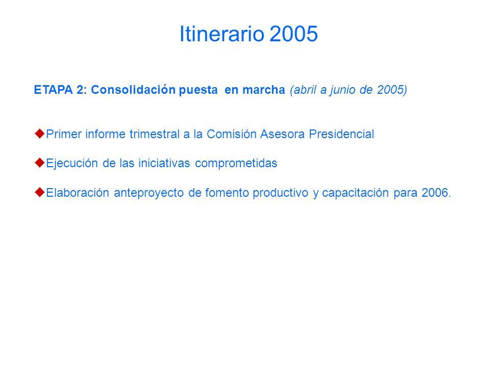 ETAPA 2: Consolidación puesta en marcha (abril a junio de 2005) Primer informe trimestral a la Comisión Asesora Presidencial Ejecución de las iniciativas comprometidas Elaboración anteproyecto de fomento productivo y capacitación para 2006.