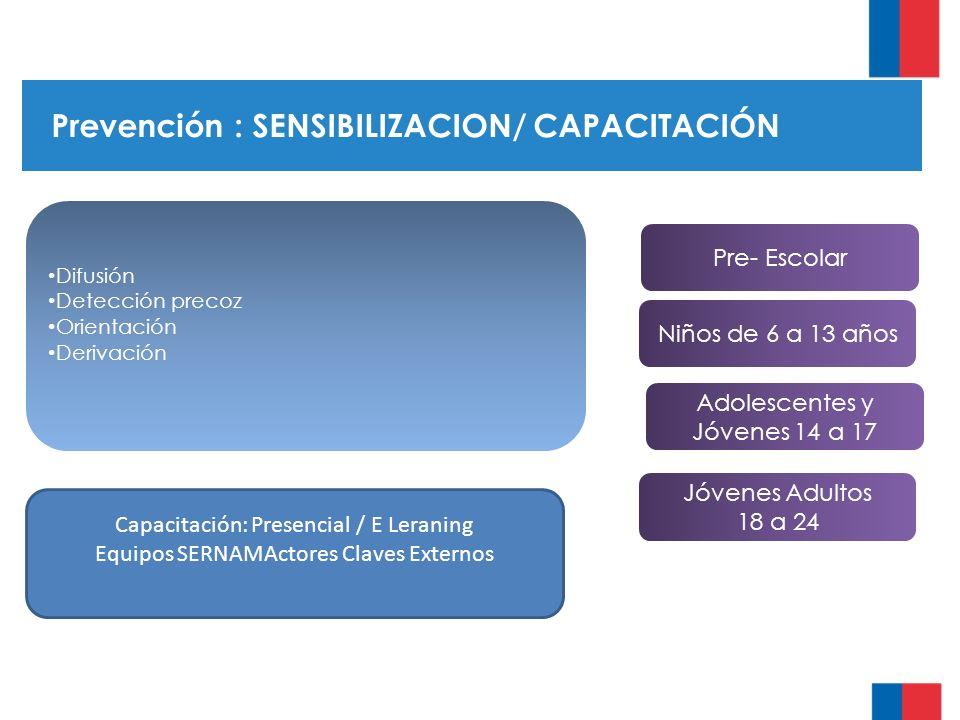 Prevención : SENSIBILIZACION/ CAPACITACIÓN Difusión Detección precoz Orientación Derivación Pre- Escolar Niños de 6 a 13 años Adolescentes y Jóvenes 14 a 17 Jóvenes Adultos 18 a 24 Capacitación: Presencial / E Leraning Equipos SERNAMActores Claves Externos