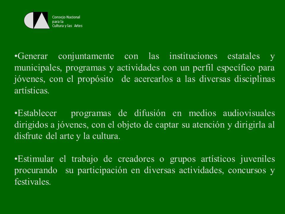 Consejo Nacional para la Cultura y las Artes Impulsar actividades a través de la cuales los jóvenes conozcan, valoren y disfruten de su patrimonio cultural, propiciando el respeto y la sensibilidad hacia las diferentes culturas de su país y del mundo.