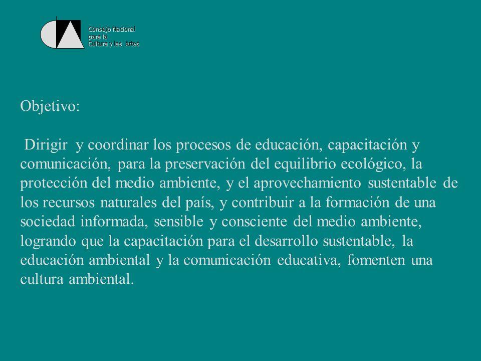 Consejo Nacional para la Cultura y las Artes Dentro de la estrategia del Cecadesu, se ubica el Programa Ambiental para la Juventud que tiene por objetivos: Crear un espacio de reflexión, análisis, formación y expresión de los jóvenes.