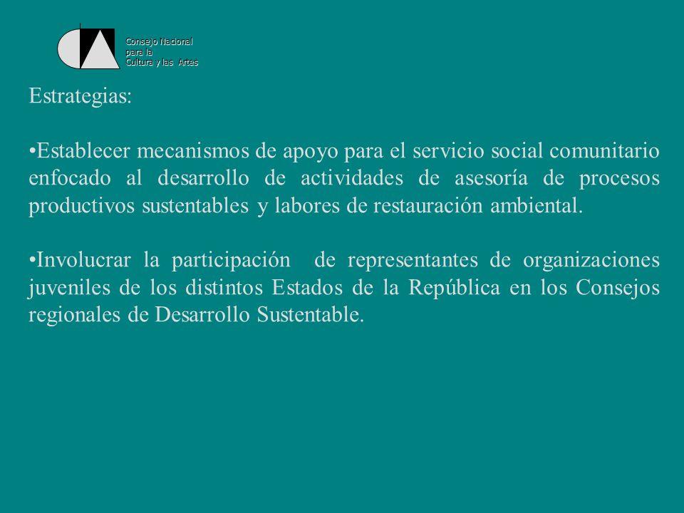 Consejo Nacional para la Cultura y las Artes Apoyo en la búsqueda de financiamiento para las iniciativas juveniles y soporte de liderazgos dentro del país, así como para la participación de los jóvenes en reuniones internacionales importantes.
