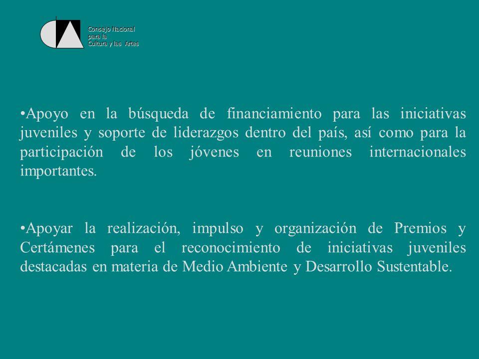 Consejo Nacional para la Cultura y las Artes Proyectos 2003 en el marco del Programa: 1.