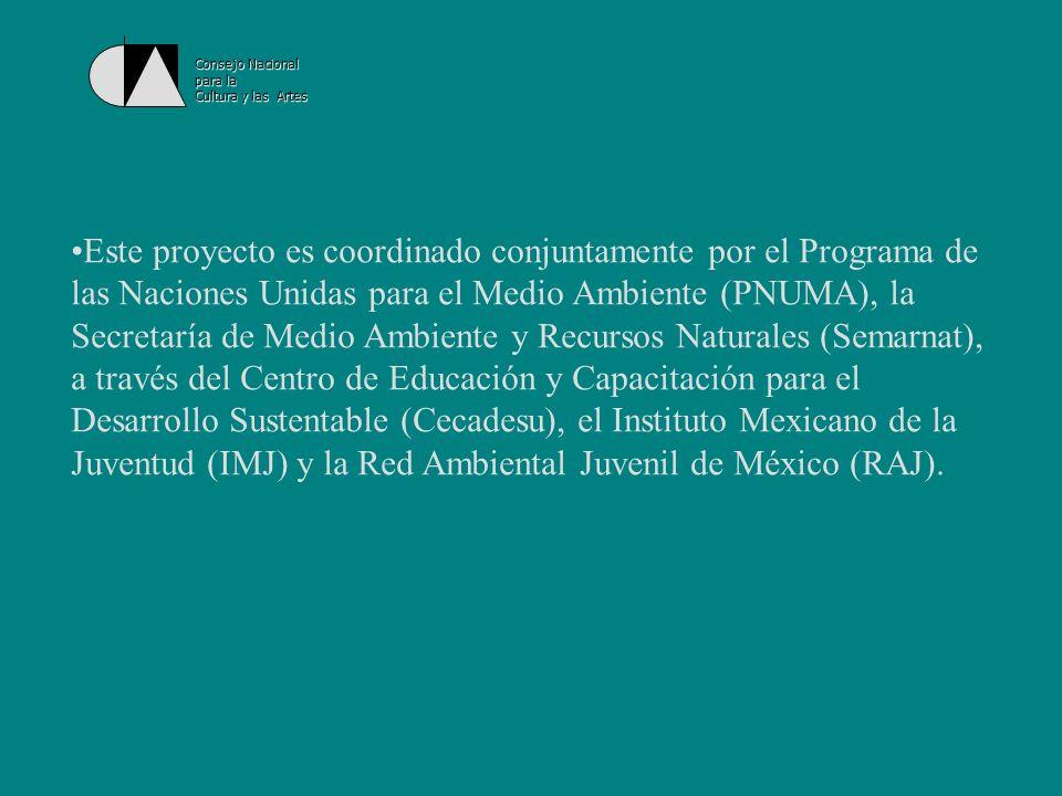 Consejo Nacional para la Cultura y las Artes Los jóvenes pueden enviar al proyecto GEO Juvenil un trabajo de investigación, estudios de caso, narrativas, ilustraciones o fotografías, entre otros, que podrán integrarse al Informe.