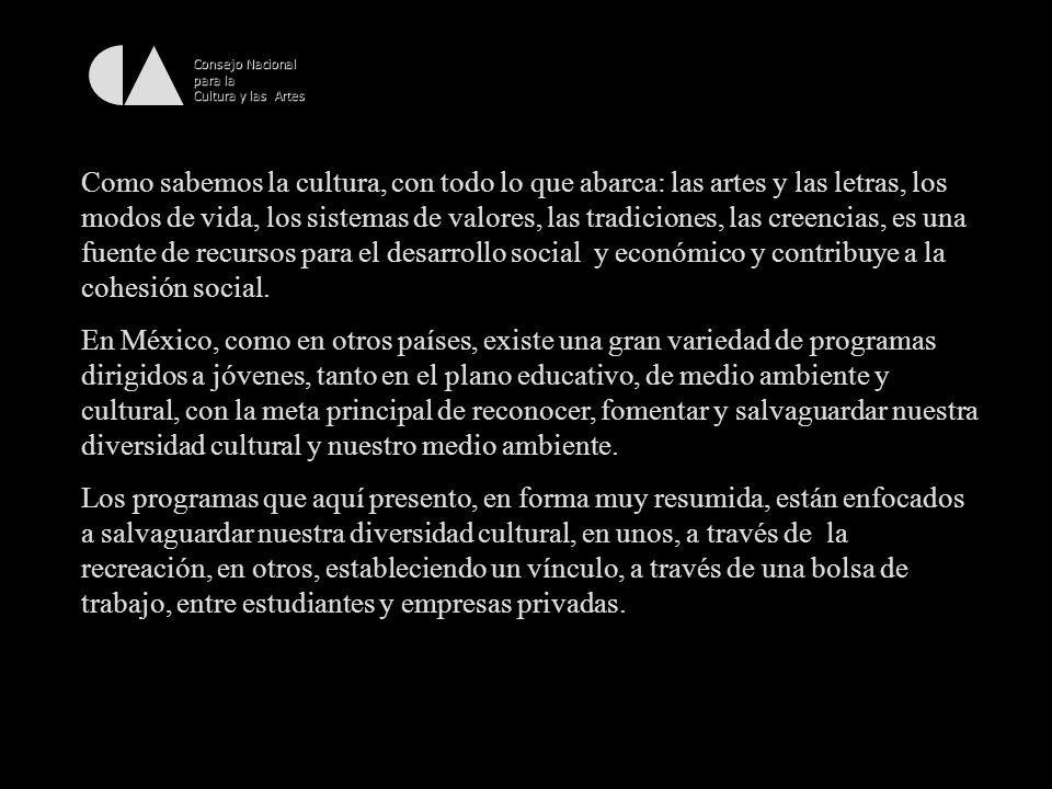 Consejo Nacional para la Cultura y las Artes Generar exposiciones y actividades de difusión y promoción cultural con la participación activa de las organizaciones populares e indígenas y de los creadores de la cultura popular.
