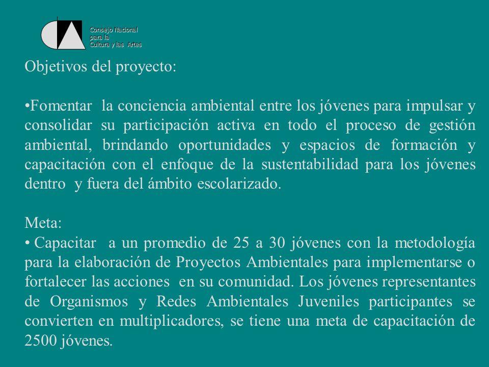 Consejo Nacional para la Cultura y las Artes Algunas actividades a realizarse dentro del Proyecto: Curso - taller Encausemos el agua.