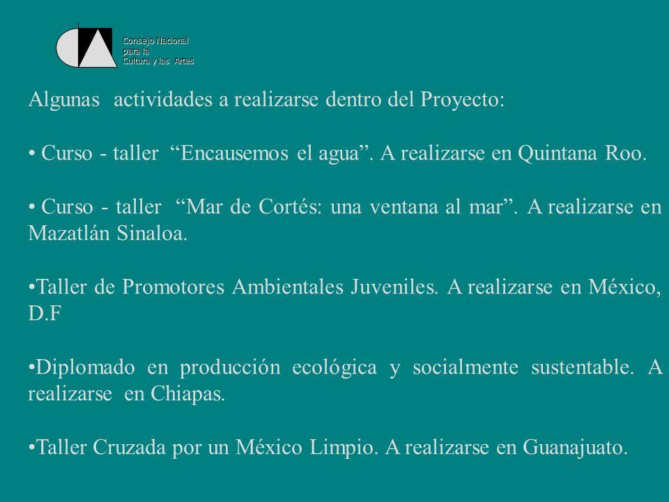 Consejo Nacional para la Cultura y las Artes Instituto Mexicano de la Juventud La creación del Instituto Mexicanos de la Juventud (IMJ) marca el inicio de una nueva etapa en la construcción de lo juvenil en el país.