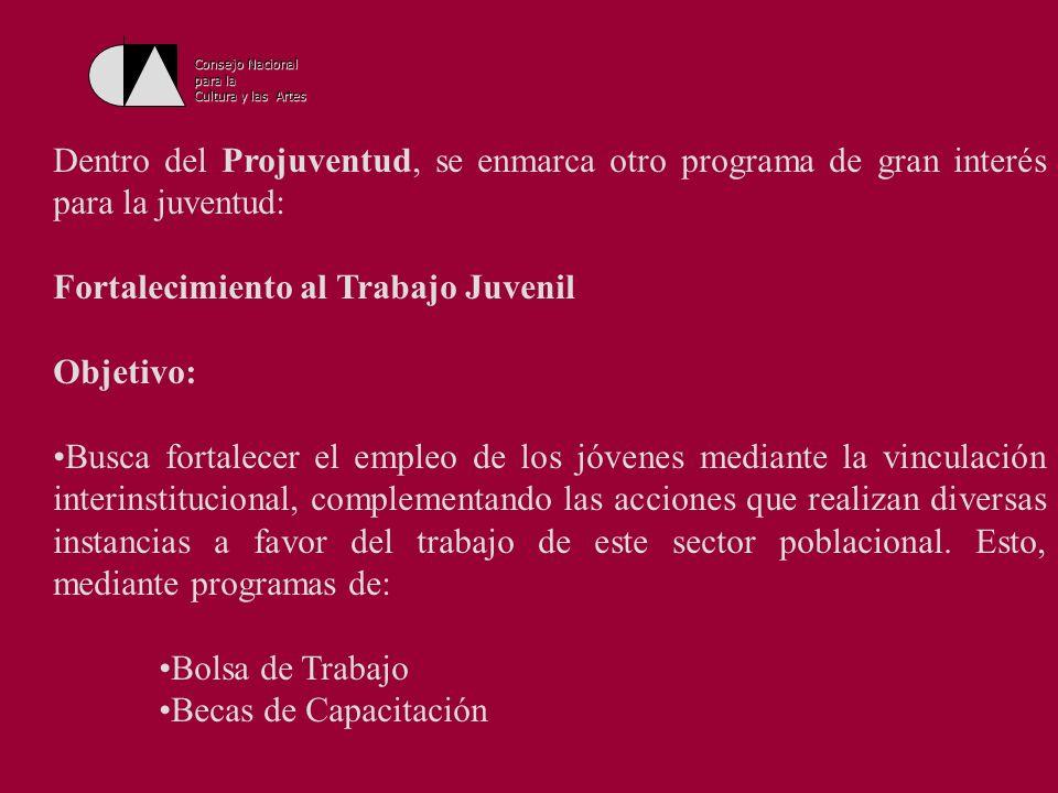 Consejo Nacional para la Cultura y las Artes El programa opera en las instalaciones del Instituto Mexicano de la Juventud (IMJ) y a través de las instancias Estatales de la Juventud.