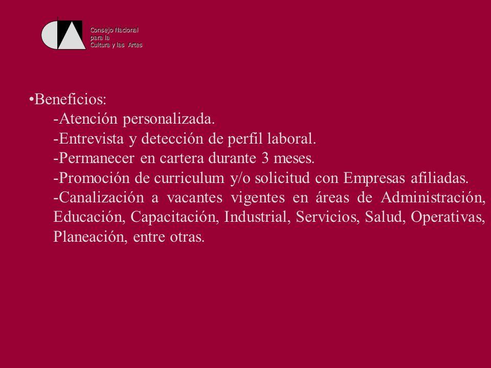 Consejo Nacional para la Cultura y las Artes Consejo Nacional para la Cultura y las Artes Dirección General de Asuntos Internacionales Dirección de Cooperación Cultural Internacional