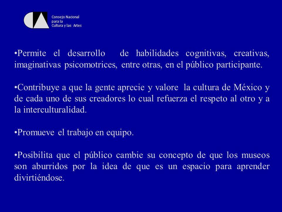 Consejo Nacional para la Cultura y las Artes ¿Cómo se lleva a cabo un taller en el Museo.