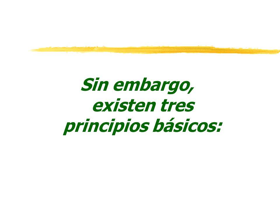 Sin embargo, existen tres principios básicos: