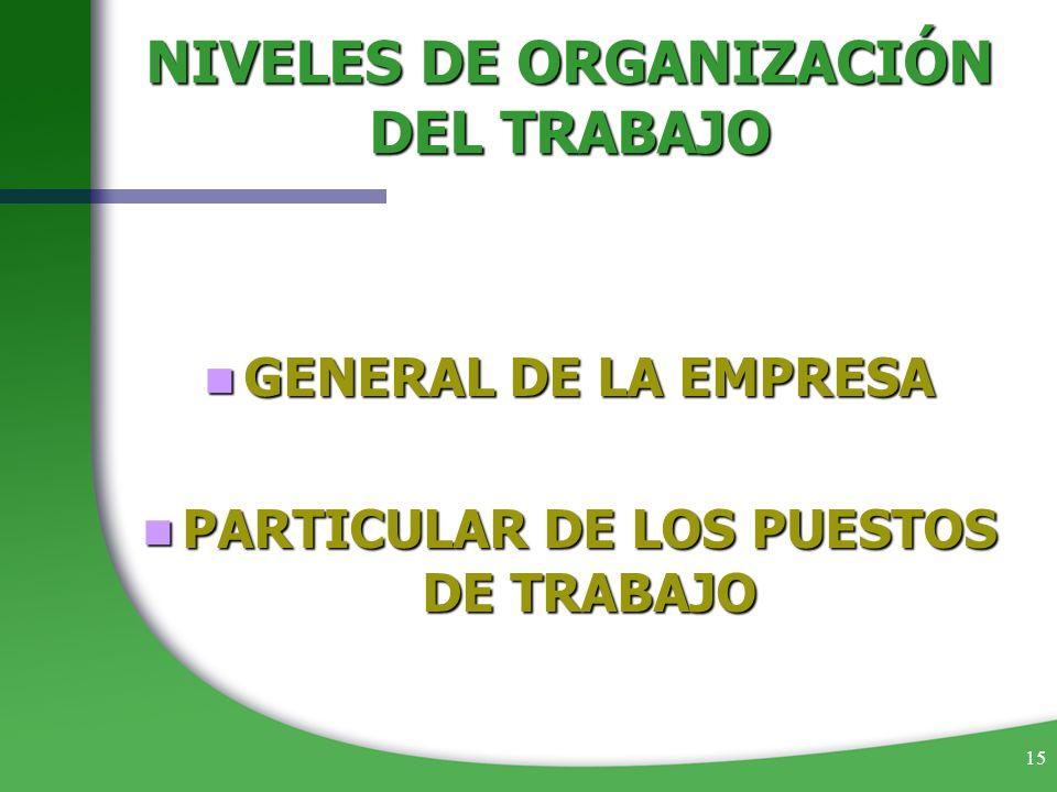 15 NIVELES DE ORGANIZACIÓN DEL TRABAJO GENERAL DE LA EMPRESA GENERAL DE LA EMPRESA PARTICULAR DE LOS PUESTOS DE TRABAJO PARTICULAR DE LOS PUESTOS DE T
