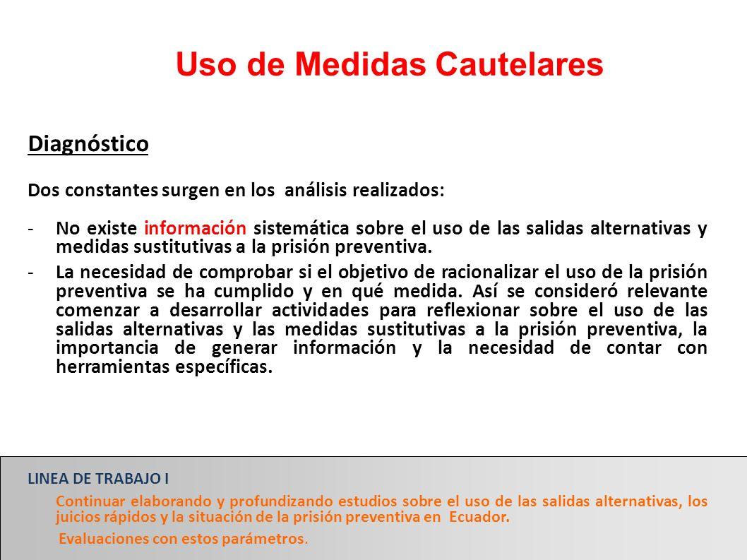 Uso de Medidas Cautelares Diagnóstico Dos constantes surgen en los análisis realizados: -No existe información sistemática sobre el uso de las salidas