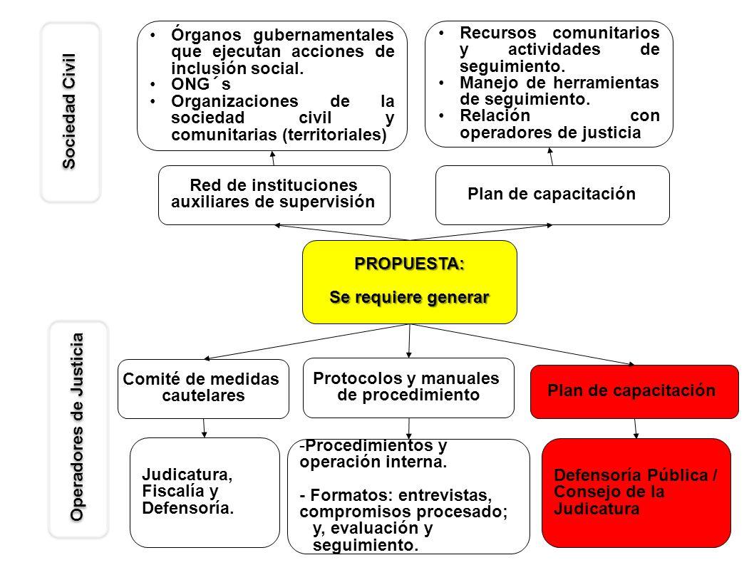 PROPUESTA: Se requiere generar Red de instituciones auxiliares de supervisión Plan de capacitación Órganos gubernamentales que ejecutan acciones de in