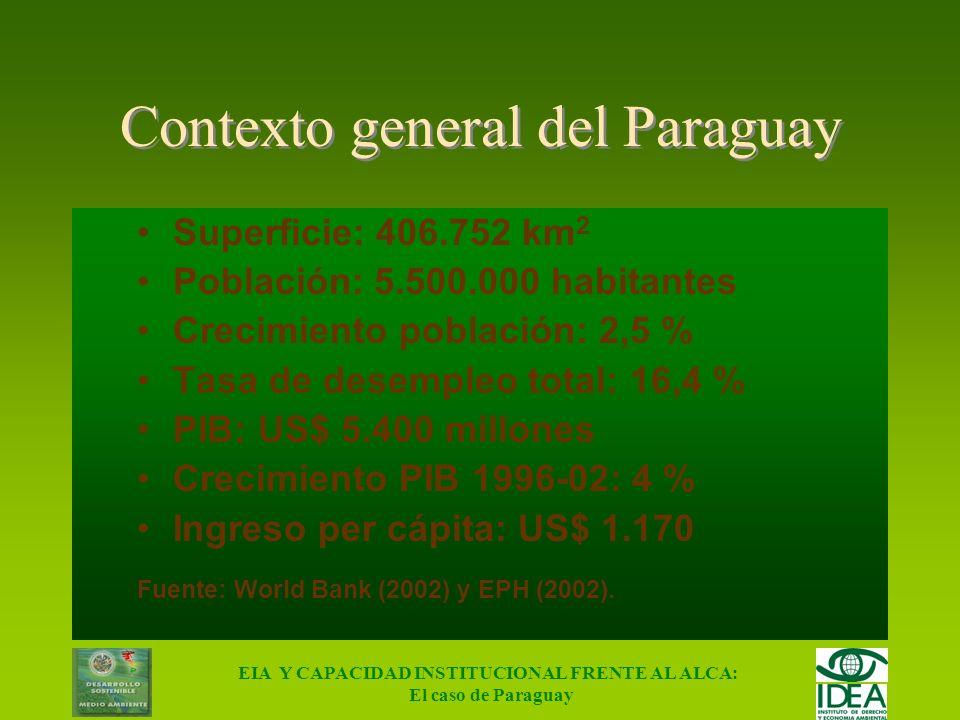 EIA Y CAPACIDAD INSTITUCIONAL FRENTE AL ALCA: El caso de Paraguay 1 2 3... n Método integral de valuación SECTOR PRODUCTIVO PARAGUAY Ci (Incluye toda