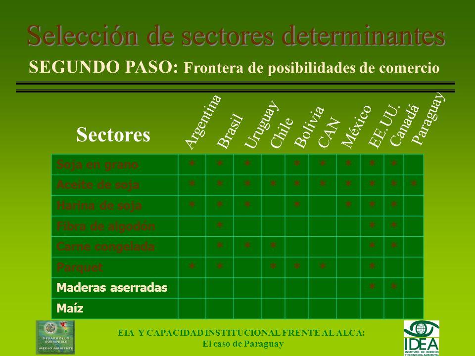 EIA Y CAPACIDAD INSTITUCIONAL FRENTE AL ALCA: El caso de Paraguay Selección de sectores determinantes PRIMER PASO: Análisis de magnitudes Datos para e
