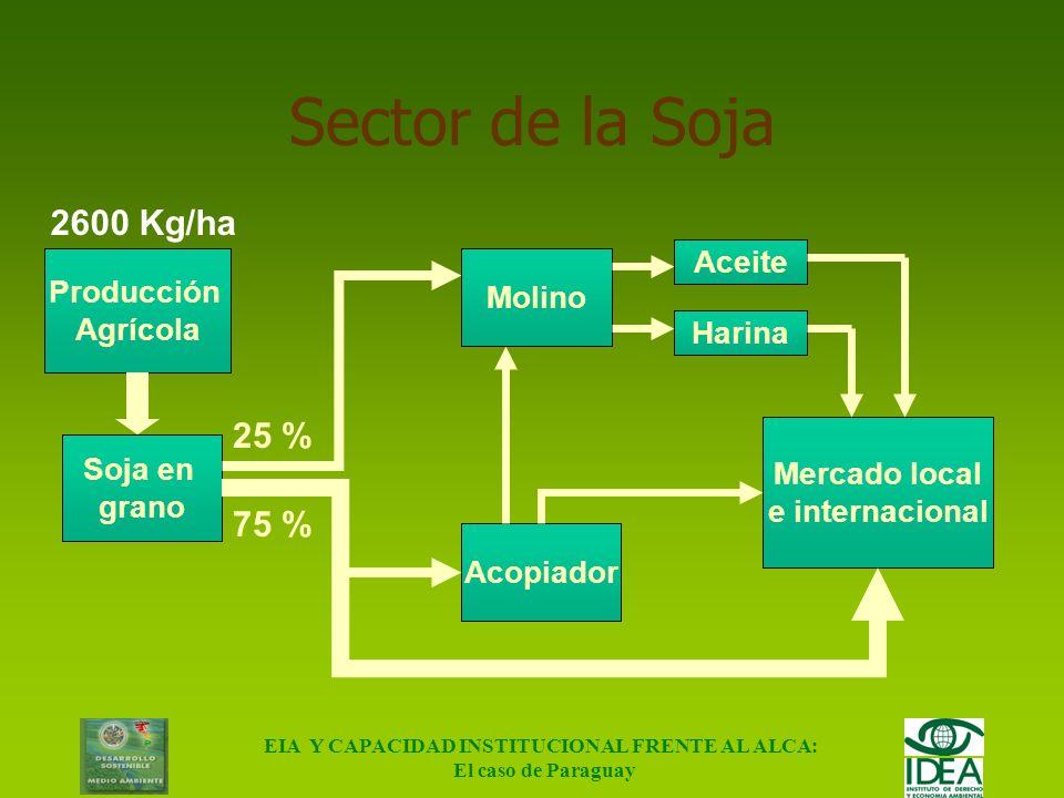EIA Y CAPACIDAD INSTITUCIONAL FRENTE AL ALCA: El caso de Paraguay Selección de sectores determinantes SEGUNDO PASO: Frontera de posibilidades de comer
