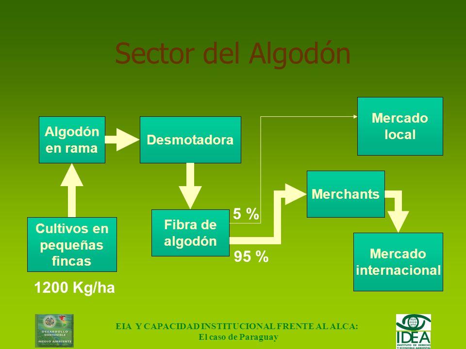 EIA Y CAPACIDAD INSTITUCIONAL FRENTE AL ALCA: El caso de Paraguay Sector de la Soja Producción Agrícola Soja en grano Molino Acopiador Aceite Harina M