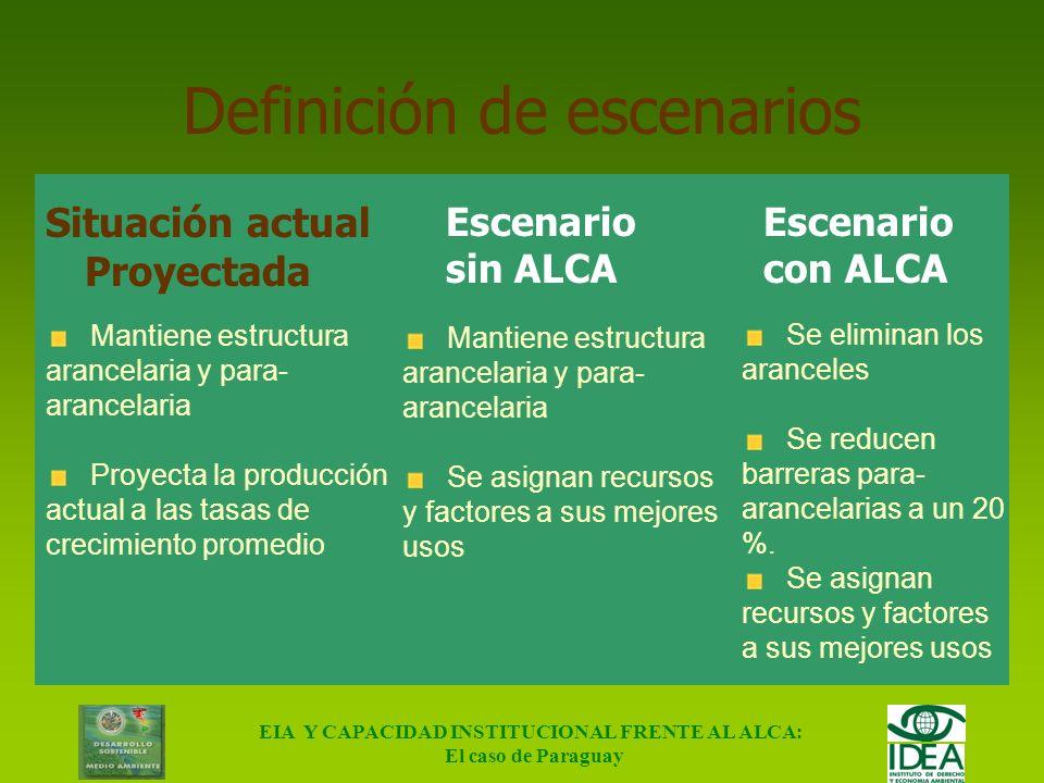EIA Y CAPACIDAD INSTITUCIONAL FRENTE AL ALCA: El caso de Paraguay Sector de la Madera Explotación forestal Rollos Aserradero Madera aserrada Maderera