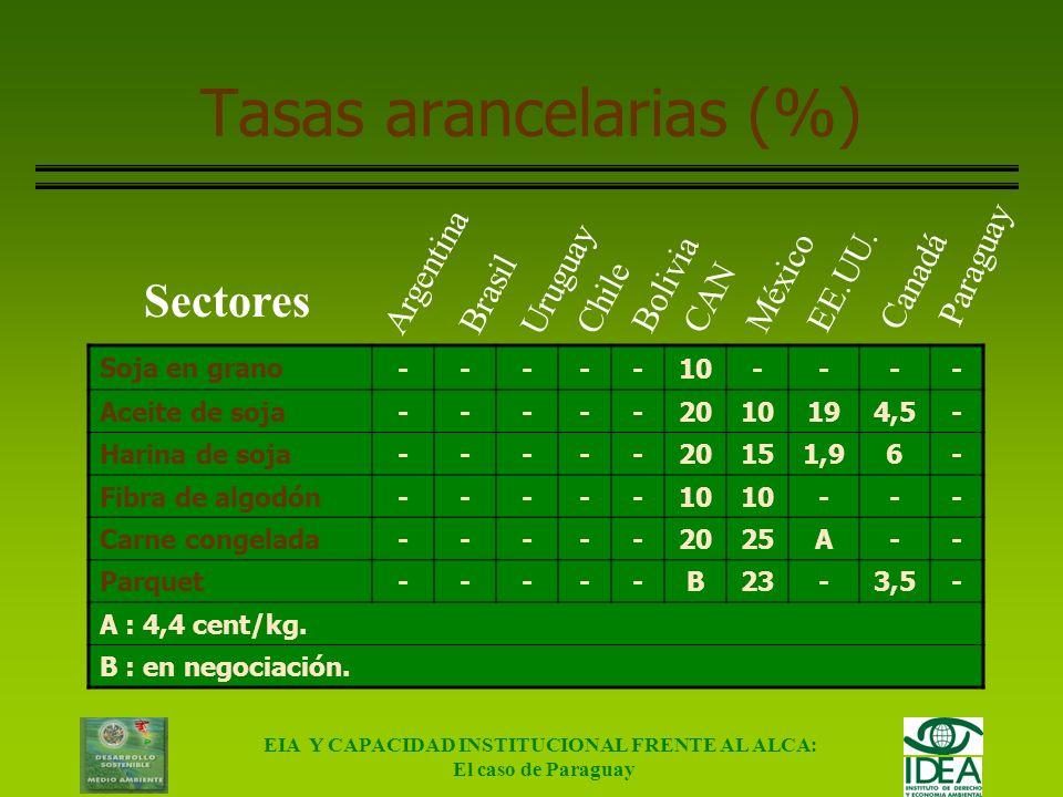 EIA Y CAPACIDAD INSTITUCIONAL FRENTE AL ALCA: El caso de Paraguay Definición de escenarios Situación actual Proyectada Escenario sin ALCA Escenario co