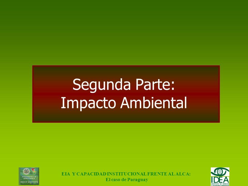 EIA Y CAPACIDAD INSTITUCIONAL FRENTE AL ALCA: El caso de Paraguay Conclusiones Alta dependencia de la soja Alta dependencia de Brasil Alta dependencia