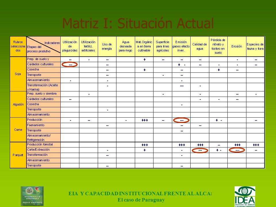 EIA Y CAPACIDAD INSTITUCIONAL FRENTE AL ALCA: El caso de Paraguay Ponderación de Impactos Negativo Positivo (-) Bajo ( + ) Bajo (--) Medio ( ++ ) Medi