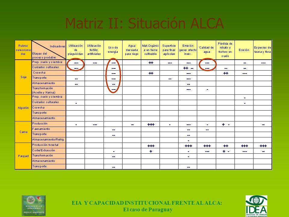 EIA Y CAPACIDAD INSTITUCIONAL FRENTE AL ALCA: El caso de Paraguay Matriz I: Situación Actual