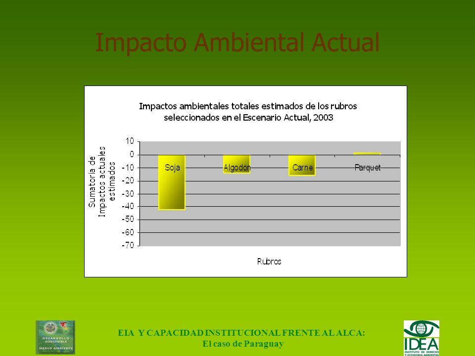 EIA Y CAPACIDAD INSTITUCIONAL FRENTE AL ALCA: El caso de Paraguay Matriz Diferencial