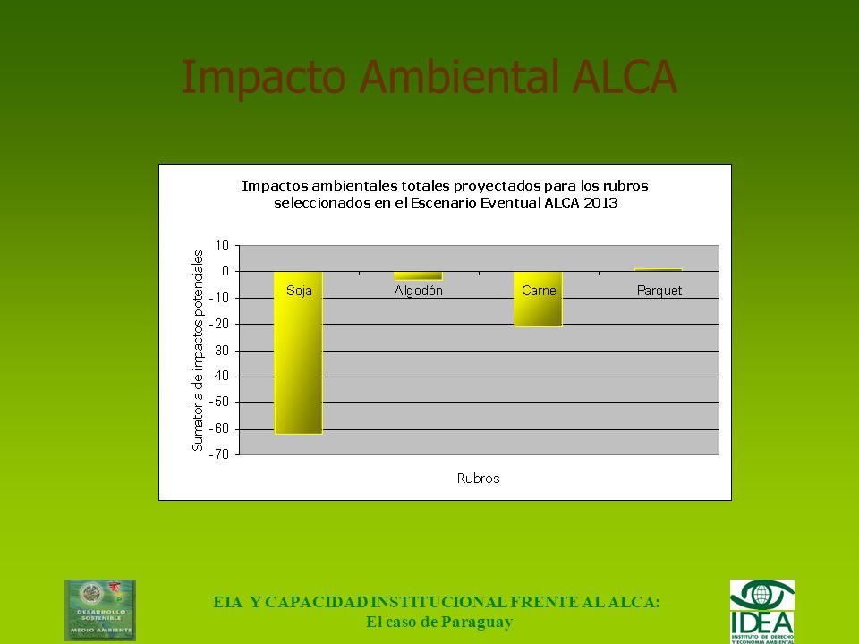 EIA Y CAPACIDAD INSTITUCIONAL FRENTE AL ALCA: El caso de Paraguay Impacto Ambiental Actual