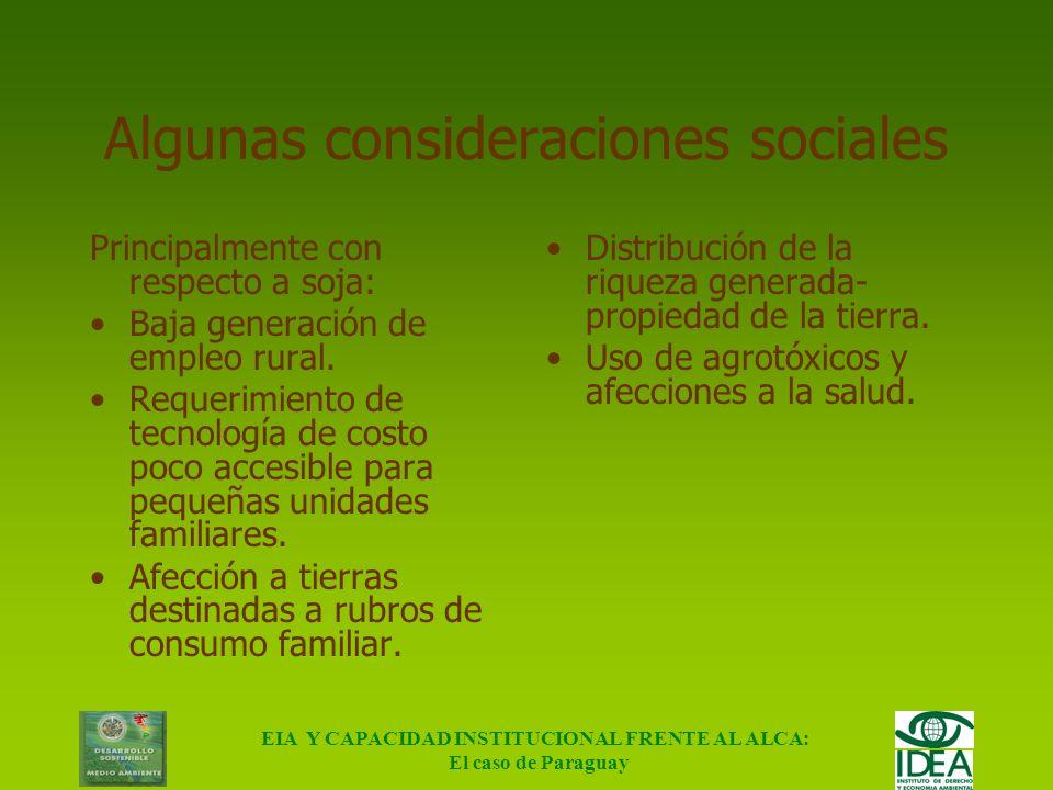 EIA Y CAPACIDAD INSTITUCIONAL FRENTE AL ALCA: El caso de Paraguay Impacto Ambiental ALCA