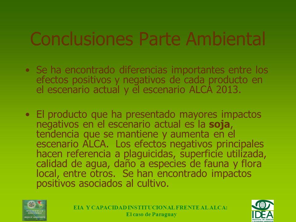 EIA Y CAPACIDAD INSTITUCIONAL FRENTE AL ALCA: El caso de Paraguay Algunas consideraciones sociales Principalmente con respecto a soja: Baja generación