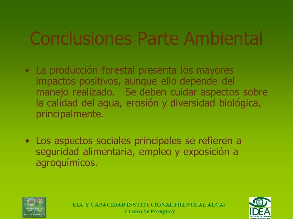 EIA Y CAPACIDAD INSTITUCIONAL FRENTE AL ALCA: El caso de Paraguay Conclusiones Parte Ambiental El algodón presenta aspectos exclusivamente negativos,